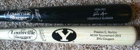 P_norton_s_byu_bat_medium