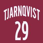 Tjarnqvist_jersey_medium