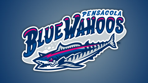 Image result for blue wahoos