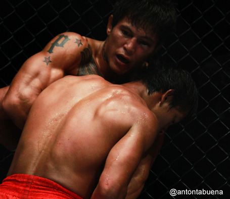 Onefc-1_medium