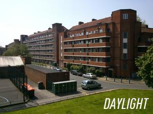 300_daylight