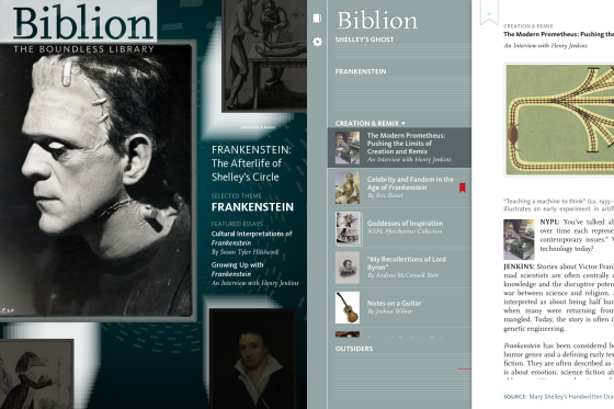 Biblionscreen2
