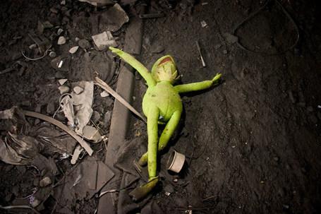 Kermit-the-frog-is-dead_medium