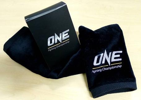 Onefc-2_medium
