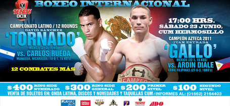 Estrada_vs_diale_banner_medium