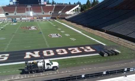Reser_old_turf_removal_medium
