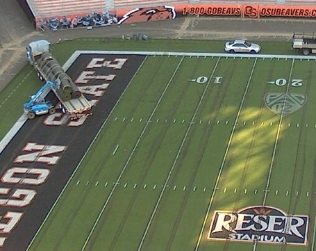 Reser_turf_project_medium