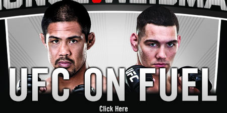 UfC on FUEL TV 4 Results