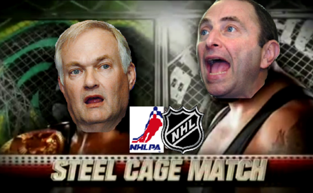 Steelcage_medium
