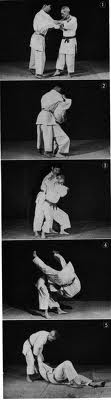 Ippon_seoi_nague_medium