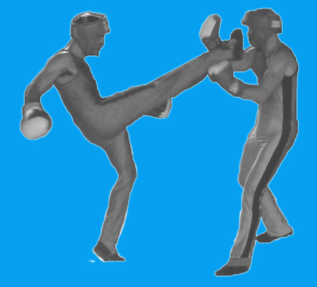 Savate2_medium