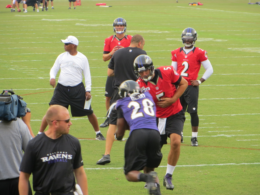 ... Miami Dolphins catches www.bet at home.gr kasynie a pass over Matt Elam of the Baltimore Ravens
