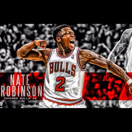 Nate-robinson-bulls_medium