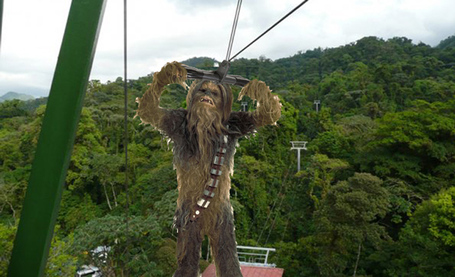 Chewbacca-zipline2_medium