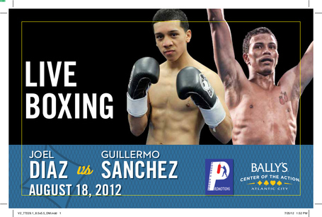 Diaz_vs_sanchez_banner_medium