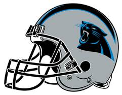 Panthers_helmet_-_home_medium