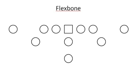Flexbone_medium
