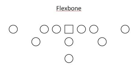 Flexbone_medium