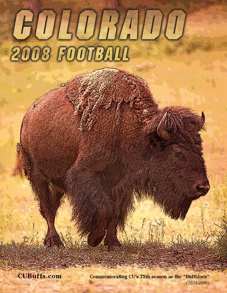 Guide-2008_football_buffs_medium