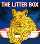 Litter-box-large_medium