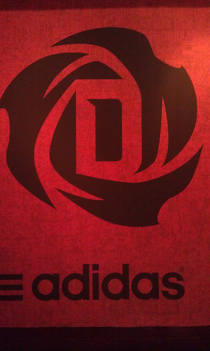 Derrick-rose-logo_medium