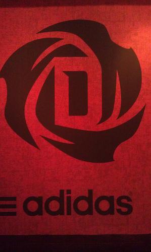 Derrick-rose-logo_medium