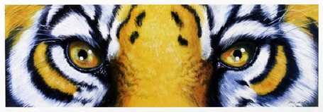 Lsu_tiger_eyes_medium