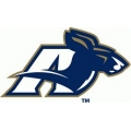 Ncaa_akron_zips_a_logo-120x120_medium