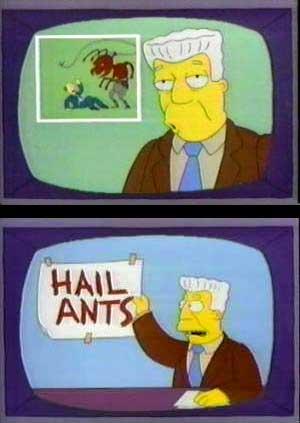 Ants_medium