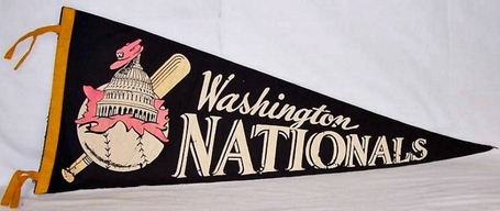 Nationals_pennant_medium