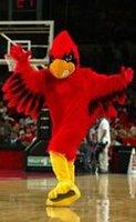 Cardinal_medium