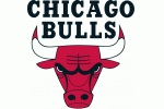 Bulls_logo_medium