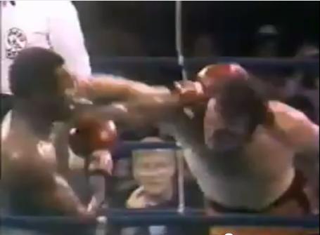 Cobb_fight_medium