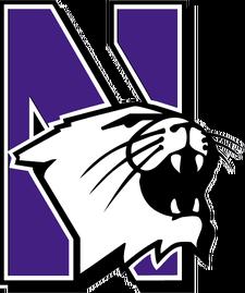 Northwesternwildcats_medium