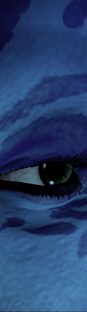 Eye_300_long