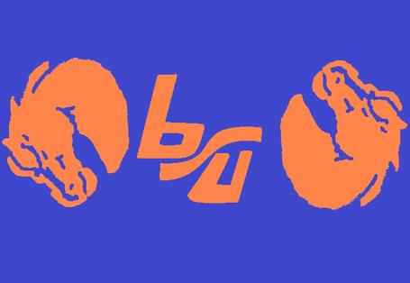 Bsuconcept_medium