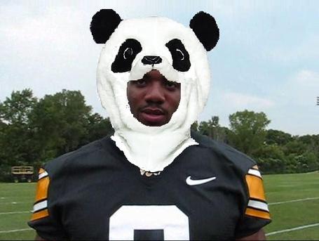 Panda_don_shumpert_medium