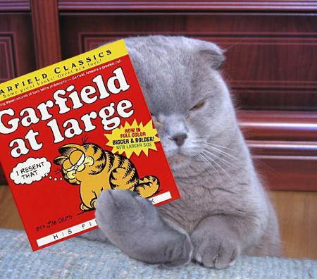 Fiskers_garfield_book_medium