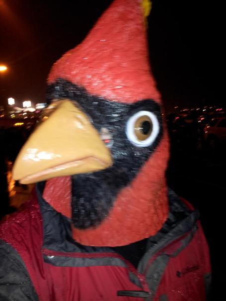 Bird3_medium