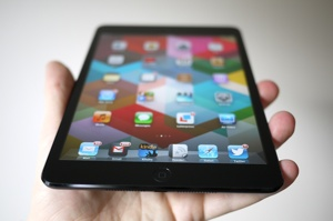 Ipadmini30023