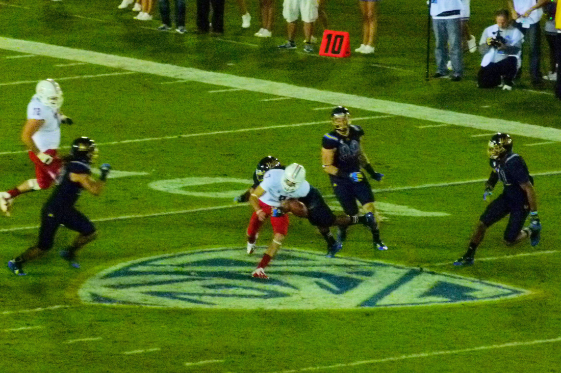 P1220065_az_fumble