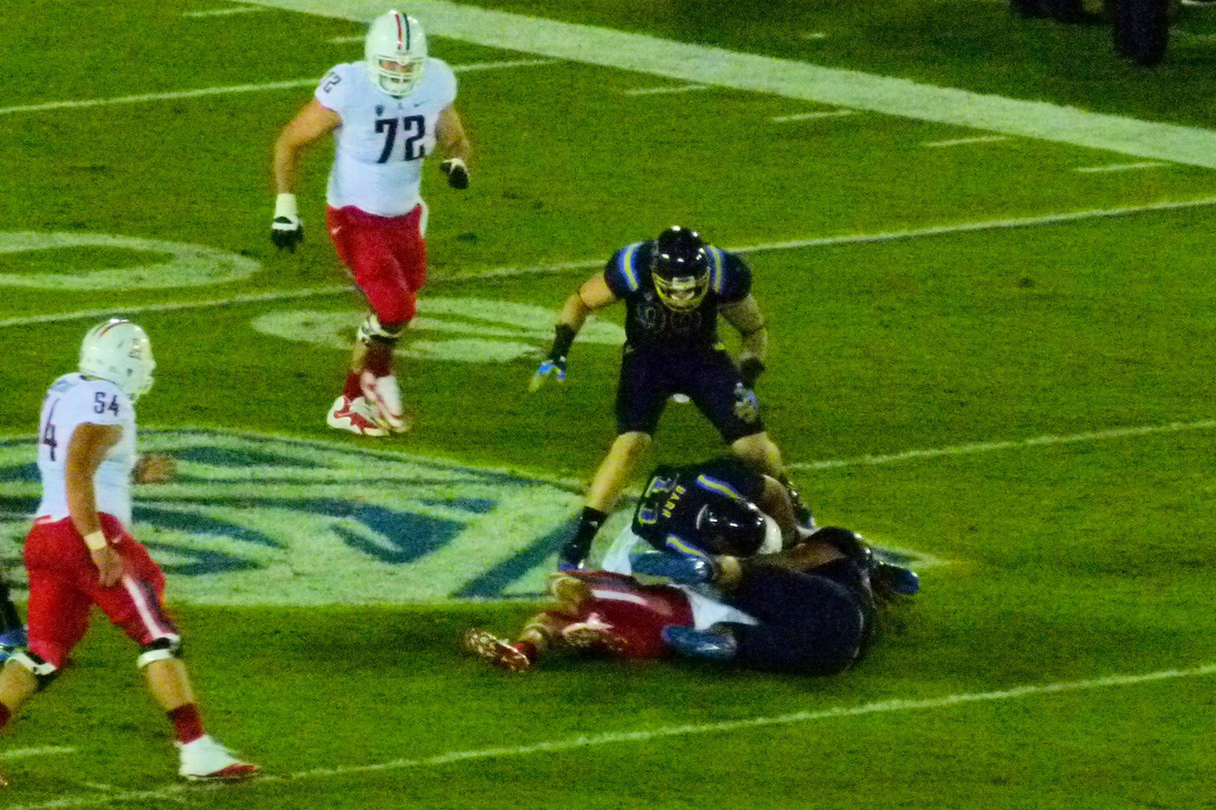 P1220068_az_fumble