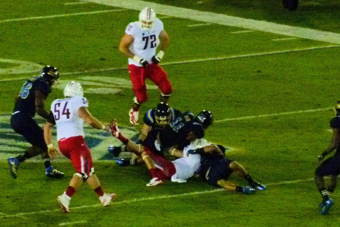 P1220069_az_fumble