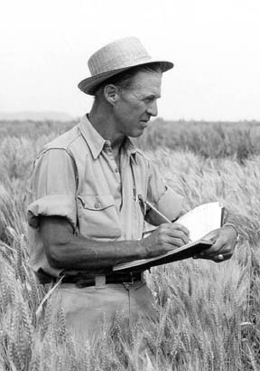 Borlaug_medium