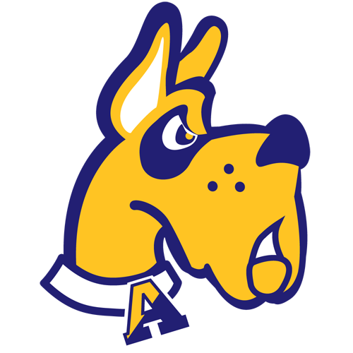 Albany-great-danes_medium