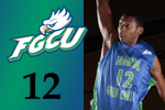 Fgcu-mcknight_medium