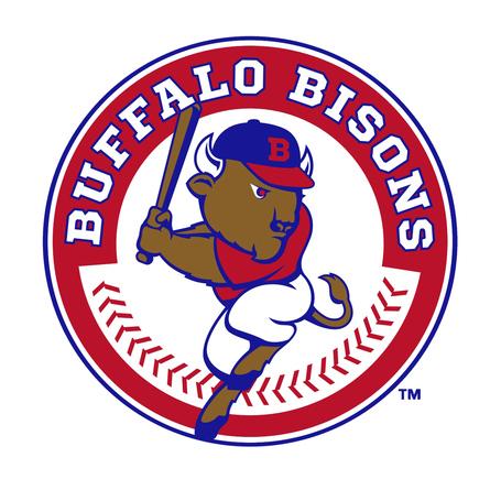 Bisons_2013_logo_medium