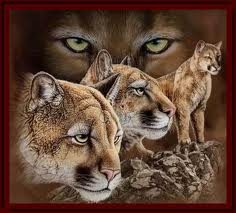 Cougar_mural_medium