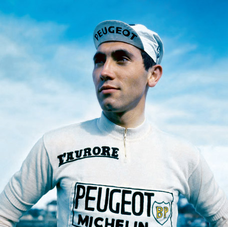 Merckx3_medium