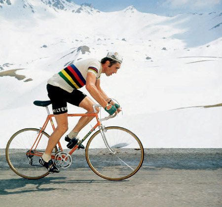 Merckx8_medium
